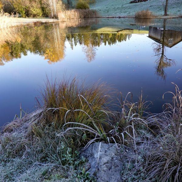 #dörnlesee #dahoam #visitbregenzerwald #visitaustria #visitvorarlberg #ersterfrost #frost #frozen #frostymorning #frosty #raureif #coldmorning #coldoutside ...