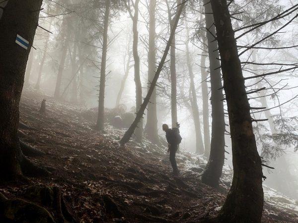 Foggy #hike to Staufenspitze 🙈☁️. . . #hiking #vorarlberg #staufen #karren #fog #autumn #autumnvibes #visitvorarlberg #dornbirn #meindornbirn...