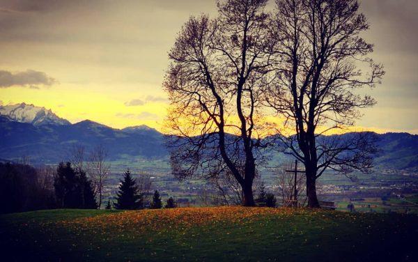 Spätherbstlicher Blick übers Rheintal #rheintal #vorarlberg #dornbirn #placewithaview #kehlegg #hiking Dornbirn