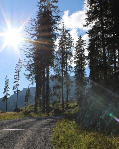 Jeder Meter ist es wert! 😌🙈🤩🙏🏼🙌🏼😇♥️⛰️🌄🚶♂️ #bergliebe #alpen #tirol #hoherifen #shorttrip #urlaubdiezweite #hiking ...
