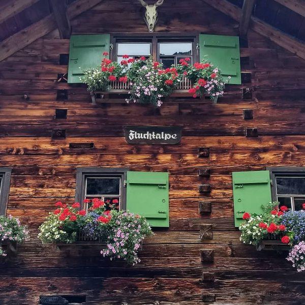 #kleinwalsertal #vorarlberg #draußenunterwegs #alpensucht #fluchtalpe #wildental #mountainside #enzian #blaueblume #heimatliebe #enjoytheday #enjoythelife #whereyourheartbeats ...