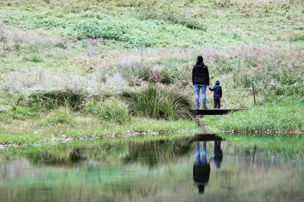 #holdamoos #meinbubundich #familytime #urlaub #JonathanUndTildaOnTour #Bregenzerwald #PapaMachtTolleFotos #Mamaglück #DieAnderenBeidenWarenAuchDabei #See #Lake #Herbstwetter #Autumn