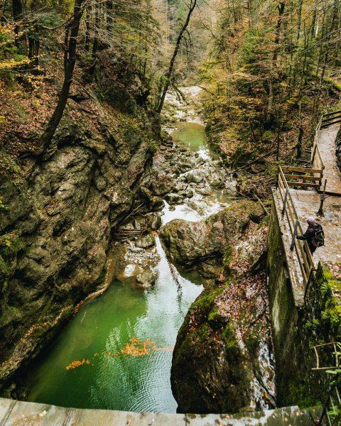 🍃😍🍂 #draußen #luftzeit #österreich #rappenlochschlucht #staufensee #sagjazumleben #abenteuer #yolo #natur #naturpur #wald #forest ...