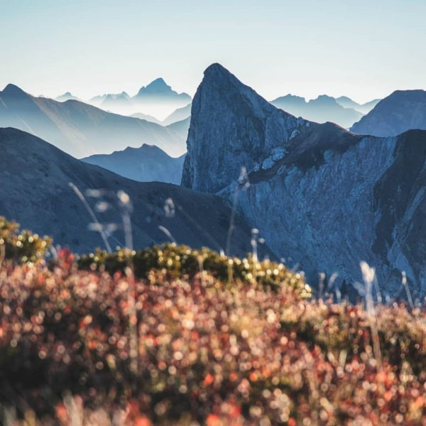 Morning view from the Zafernhorn to the Annalper Stecken and the Hochvogel ⛰️☀️ ...