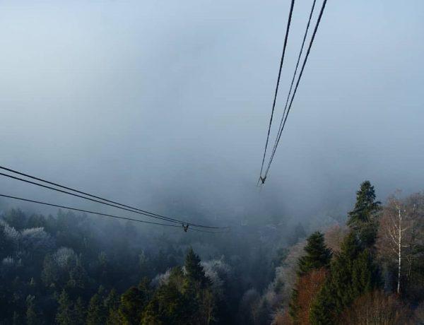 Eintauchen ins Nebelmeer vom Pfänder nach Bregenz #pfänder #bregenz #wandern #wanderlust #wanderninvorarlberg #herbst ...