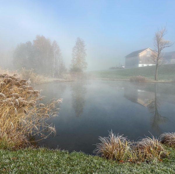 #dörnlesee #nebel #sonnenstrahlen #frühervogel #draussenzuhause #bregenzerwald #vorarlberg #earlybird #sunshine #fog Bregenzerwald