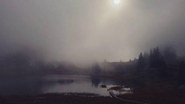 #körbersee #voralberg #austria #fog #sun #nature #naturfotografie #beutifulplace #beutifulmoments
