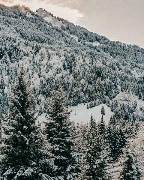Wenn ich das sehe, denke ich nicht an Skifahren oder Snowboardfahren. Ich denke ...