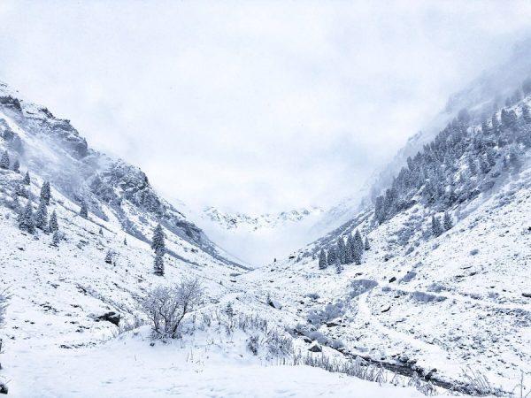 Eeeeeeeeeendlich!!!! Schnee, Schnee und nochmals Schnee!! Unser Tal verwandelt sich nach und nach ...