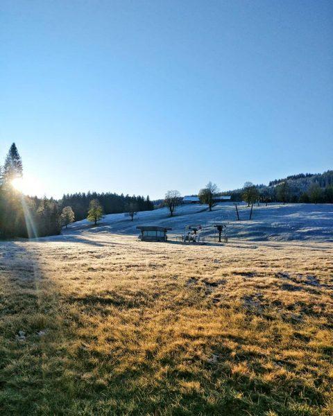 mornings like this 🍂 🖤 . . #autumnvibes🍁 #weekend #photooftoday #hiking #bödele #beautifullandscape ...