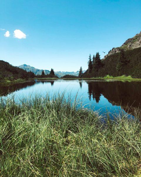 Der #Wiegensee - ein echtes Naturjuwel. ✨ Hast Du es im Sommer mal ...