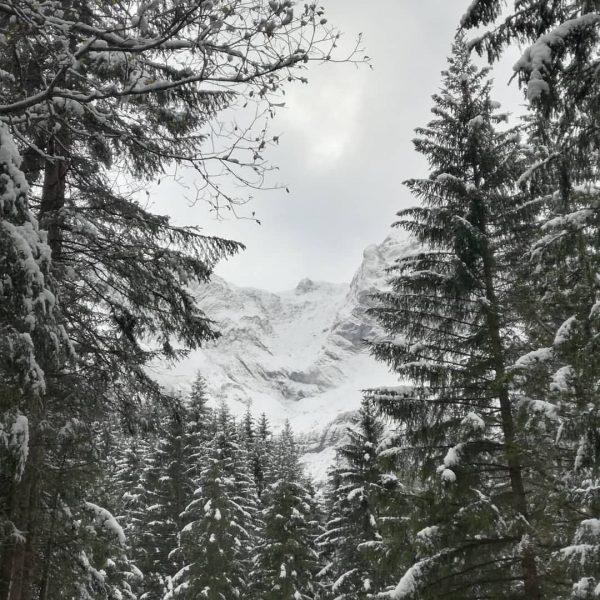 #snow #vorarlberg #hikingadventures #hiking #mountains #austria🇦🇹 Brand, Vorarlberg, Austria