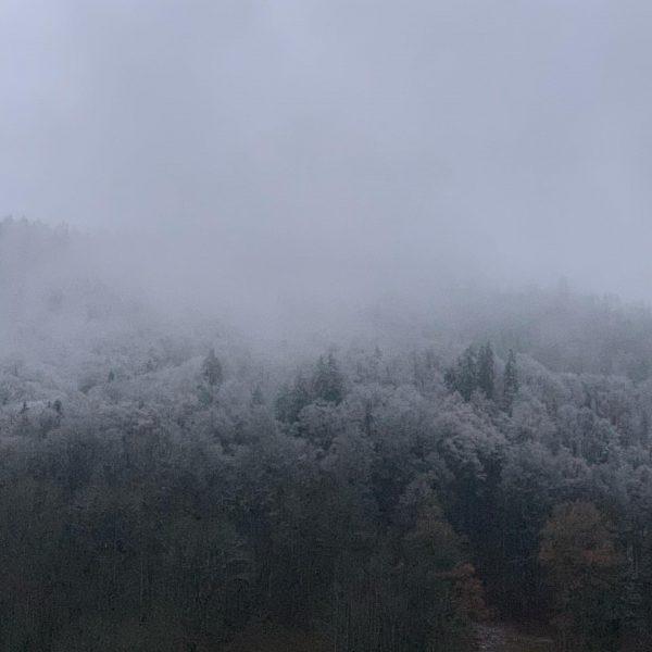 ...good morning Bizau! #bizau #bregenzerwald #vorarlberg #oesterreich #österreich #austria #visitaustria #visitvorarlberg #visitbregenzerwald #ediths ...