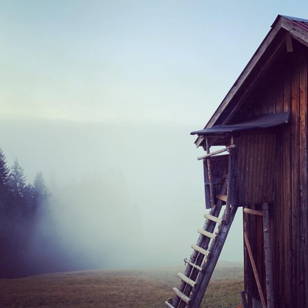 A foggy day #foggyday #nebel #hütte #berge #wald #hut #dornbirn #rikatschwende #vorarlberg #november ...