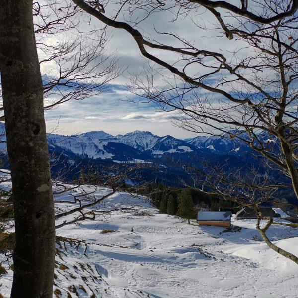 Gschwendtalpe im Schnee - #berglauf Gechelbach- Schwendealpe - Hochälpele - Alpe Gschwendt - ...