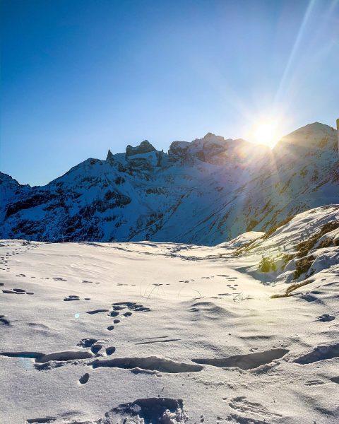 Spuren im Schnee . . . 🐾 ❄️ • • #traumtägli #heimatliabi #bergliabi ...
