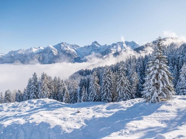 #tschengla #bürserberg #brandnertal #brandnertaltourismus #mondspitze #zimba #winteriscoming #winter #ländle #vorarlberg #vorarlbergwandern #vorarlbergtourismus #austriatravel ...