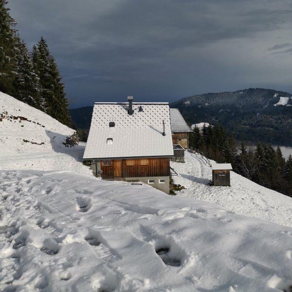 Blick auf Staufenalpe - Berglauf 1.12.2019 Karren Talstation- Stich - Staufenalpe - Schuttannen ...