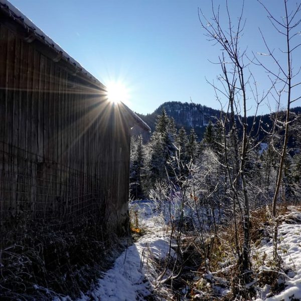 #rohrmoos #sibratsgfäll #raureif #bregenzerwald #visitbregenzerwald #visitvorarlberg #visitaustria #visitallgäu #allgäueralpen #allgäu #gottesacker #landschaft #landschaftsfotografie ...