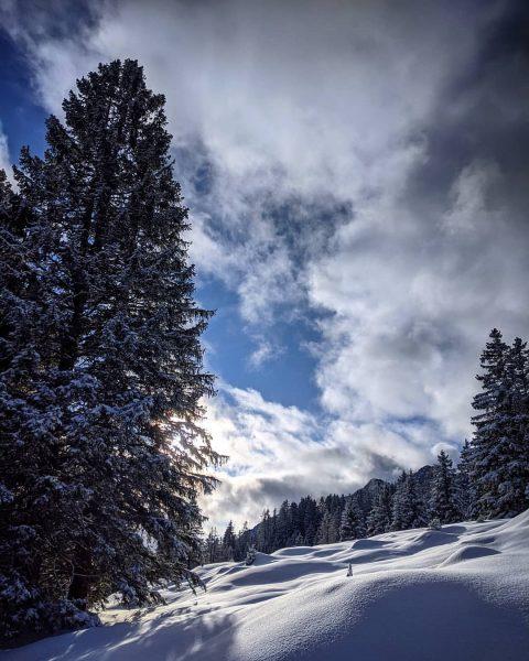 Heutige Impression😌🍀 . . #impression #brandnertal #mondspitze #visitvorarlberg #sonne #schnee #flow #goodvibes #hiking ...