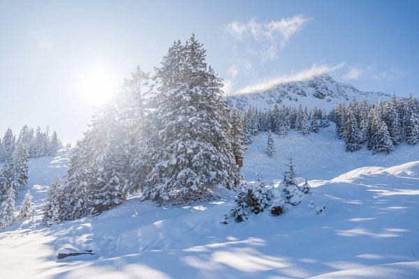 ... winterwonderland... = 🌙🏔️ #tschengla #mondspitze #bürserberg #brandnertal #brandnertaltourismus #winter #ländle #vorarlberg #vorarlbergwandern ...