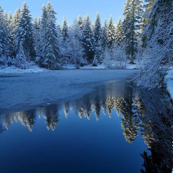 30.11.2019 snow in the mountains #winter #bödele #moorsee #bergsee #lake #dornbirn #österreich #spiegelung #landscapephotography #landscape #landscapelovers #landscape_lovers...