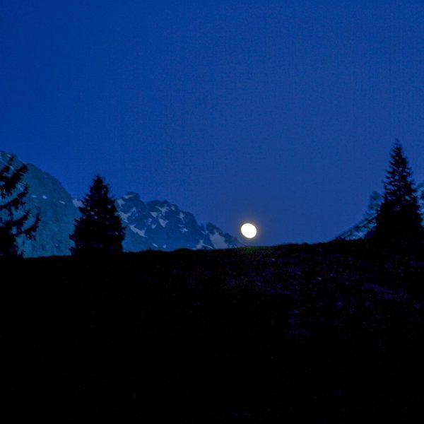 Wenn im Tal die Lichter angehen, wandern wir mit den Schneeschuhen und Stirnlampen ...