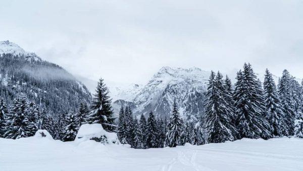 Auch bei Schneefall sehr schön im Montafon ✌️ #meinmontafon #meintraumtag #weloveaustria . . . #alpenliebe #enjoyaustria #alpen...