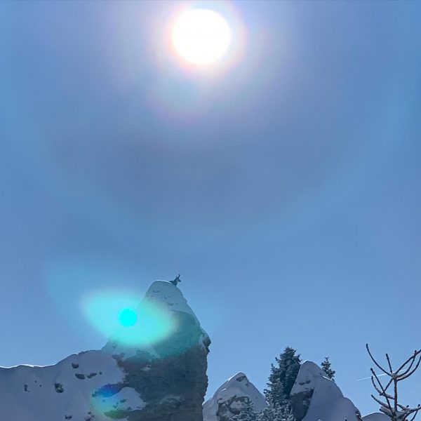 even an ibex is enjoying the sun ☀️ . . . #ibex #sun #weather #cold #snow #ski...