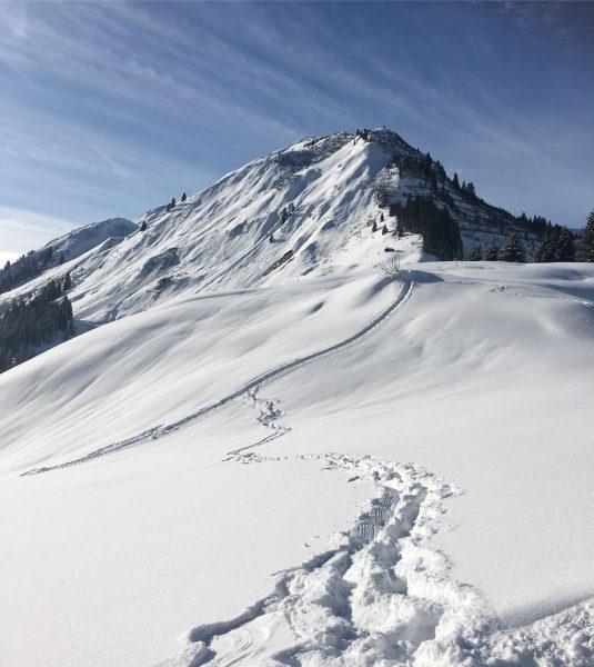 Stiefel an, raus aus dem Haus und tief einatmen! . . #snow #kaiserwetter ...