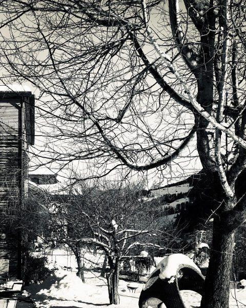 #Kleinwalsertal #naturhotel #chesavalisa #naturhotelchesavalisa #österreich #winter #schneezauber #igdaily #ig_nature #instadaily #instagood #naturelover Das ...