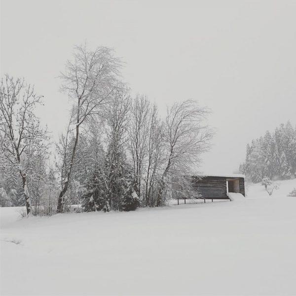 #wetter #krumbach #bregenzerwald heute morgen Schneefall bei 0°c #moorblick #moorekrumbach Krumbach, Vorarlberg