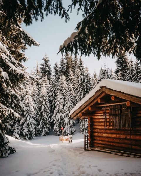 what a day 🥰 #sanktgallenkirch #austria🇦🇹 #sonyalpha #sonya7i #winterwonderland #winter #forest #cabininthewoods #photooftheday ...