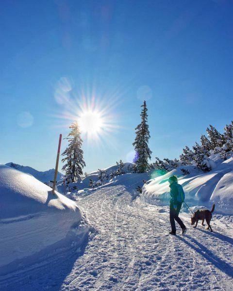 Walking to the mountain mutjöchle. #hiking #winterhiking #mountain #alpen #sonnenkopf #cannon #sun #vorarlberg ...
