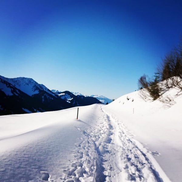 escaped the fog at the Furkajoch 😎 and had a beautiful snow hiking ...