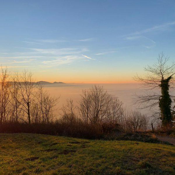 🏃🏼♀️❤️ Schöner Berglauf auf den Pfänder 😍🤩 • #berglauf #trailrun #trailrunner #trailrunning #bergauf #bodensee #bodenseeregion #pfänder #bregenz...