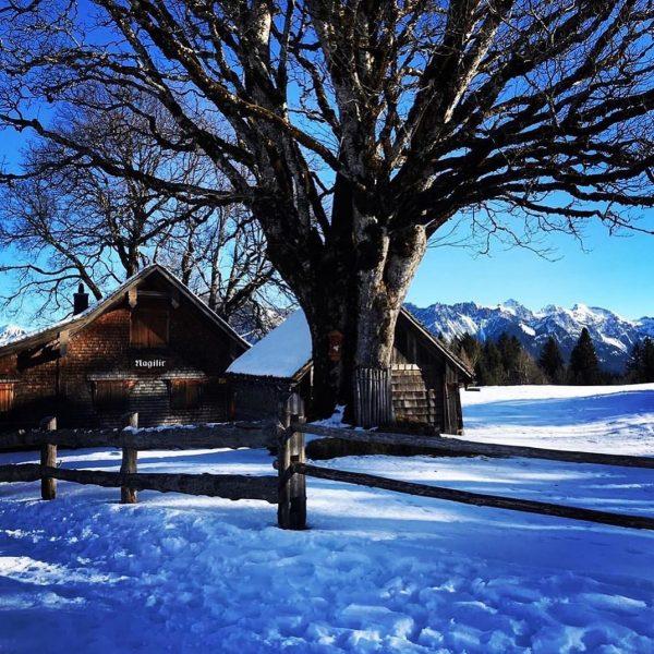 🎿Ski in - Ski Out bei wunderschönem Wetter. #brandnertal #visitbrandnertal #visitvorarlberg #bürserberg #burtschatour ...