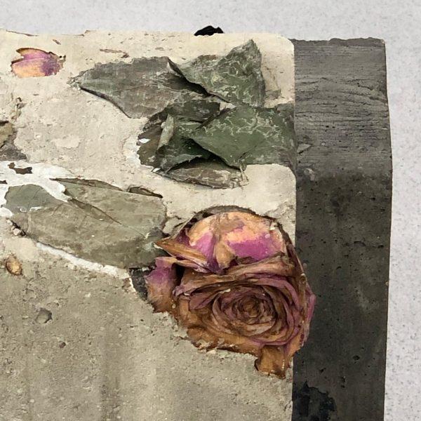 Opens today! Rosen im Zementgarten #bunnyrogers #kindkingdom #kunsthausbregenz #femaleartist #roses #concrete #fences