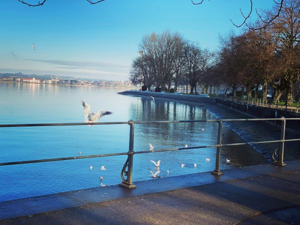 ☀️ . . . #wunderschönesländle #naturmensch #bregenzcity #visitbregenz #visitvorarlberg #zuhauseimglück #traumwetter #traumplatz #austria ...