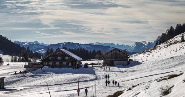 #österreich #alpen #hochhäderich #moosalpe #berge #wandernmachtglücklich #outdoor #mountains #ilovemountains #schöneswetter #schnee #landschaf #landschaftsfotografie ...