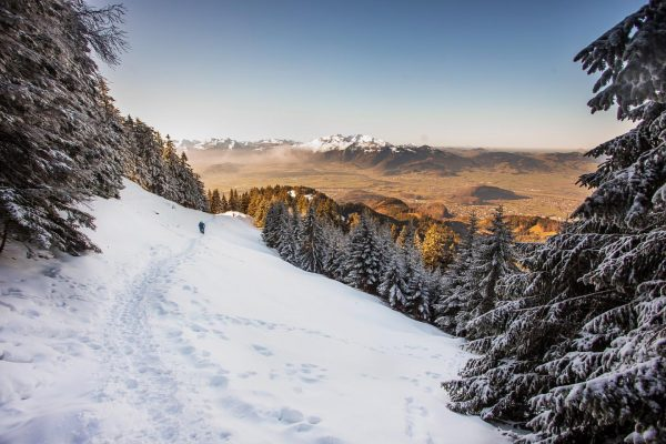 besser als perfekt @biovegan.bibi #hiking #winterhiking❄️ #winterhiking #winterwandern #vorarlberg #meinvorarlberg #visitvorarlberg #hohekugel #fraxern ...