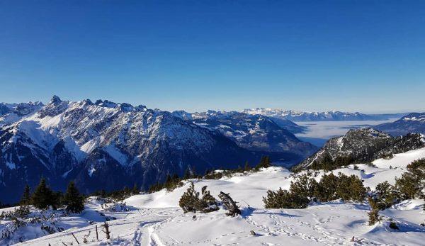 Aussicht über dem Nebelmeer ☀️ . . #vorarlberg #montafon #bartholomäberg #berge #alpen #alpenliebe ...