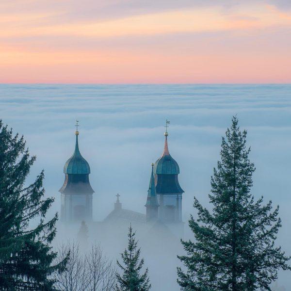 """""""Spitzen unter sich 🤗"""" Momentan muss man nicht weit hinauf um dem Nebel ..."""