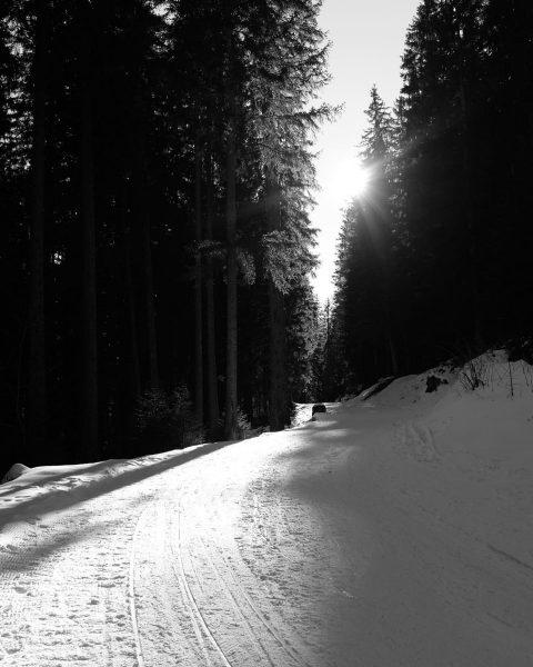 #juriatti #winter #winterwandern #tschengla #brandnertal #bludenz