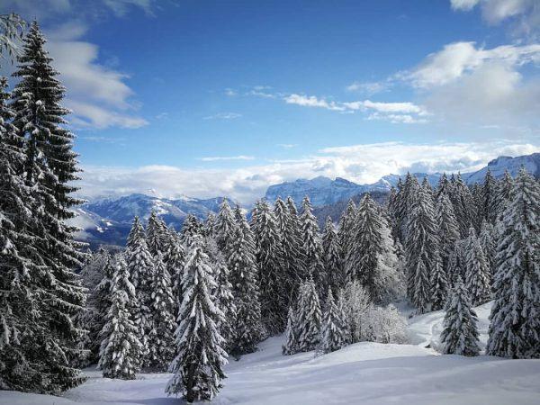 #austria #snow #sunshine #bluesky #vorarlberg Bödele Austria