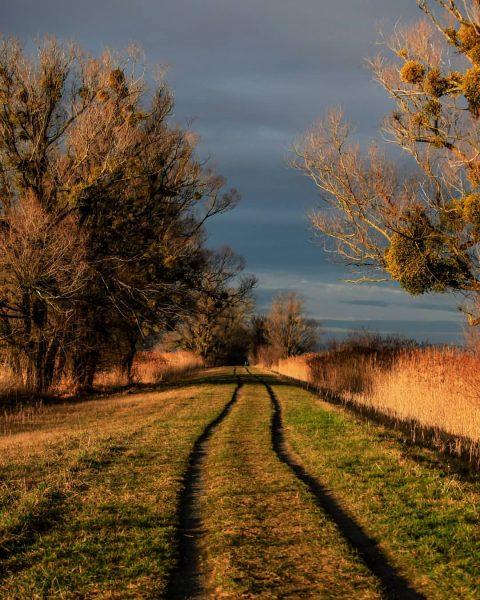 Der Weg ist es, der uns glücklich machen sollte, nicht nur das Ziel. ...