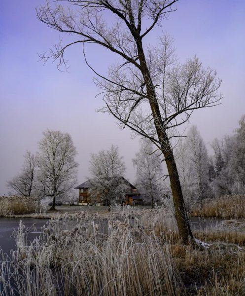 #morgenstimmung #morgenfrost #lingenau #dahoam #visitbregenzerwald #visitvorarlberg #visitaustria #lieblingsplatz #wunderschön #natur #nature #naturfotografie #naturephotography ...