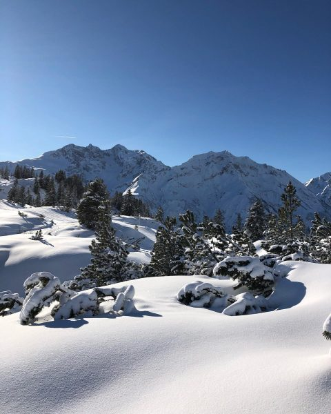 Unberührter Schnee auf dem Weg zum Körbersee Untouched snow on the way to ...