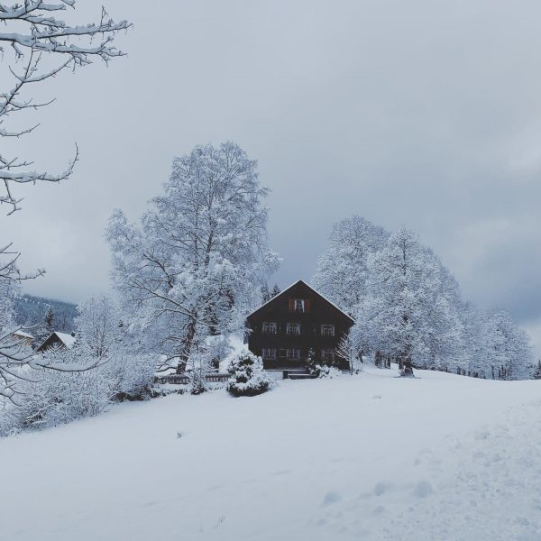 On place ✔️🔜🎿 #winter #winterwonderland #austria #holidayhouse #onvacation #ski #bürserberg #tschengla #walk #holiday ...
