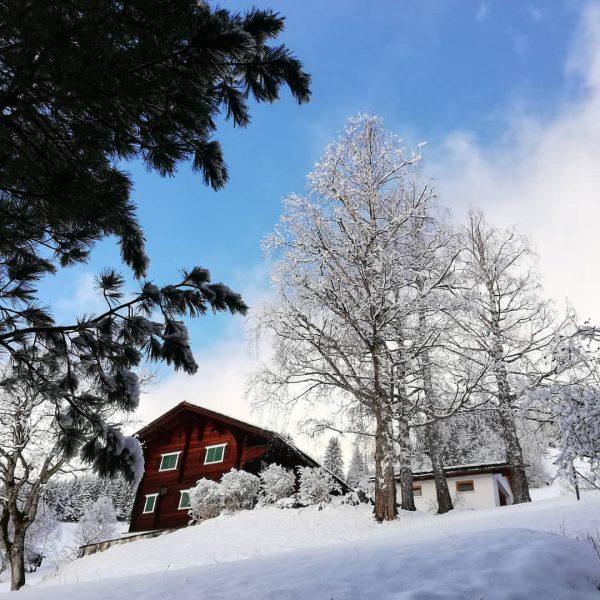 NEUSCHNEE😊 #winter #bluesky #enjoylife #ski #snow #sunny #hotelbergerhof #montafon #meinmontafon Hotel Bergerhof im ...